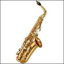 Petite question piège : à quelle famille appartient cet instrument ?