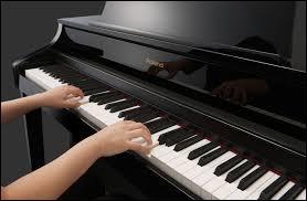 Avec quel instrument joue cette personne ?