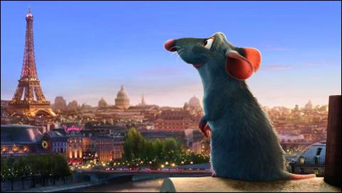 Quel film raconte l'histoire d'un rat ?