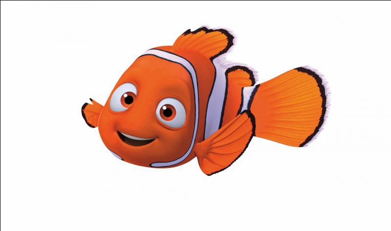 Qui est le personnage ayant perdu la mémoire dans Nemo ?