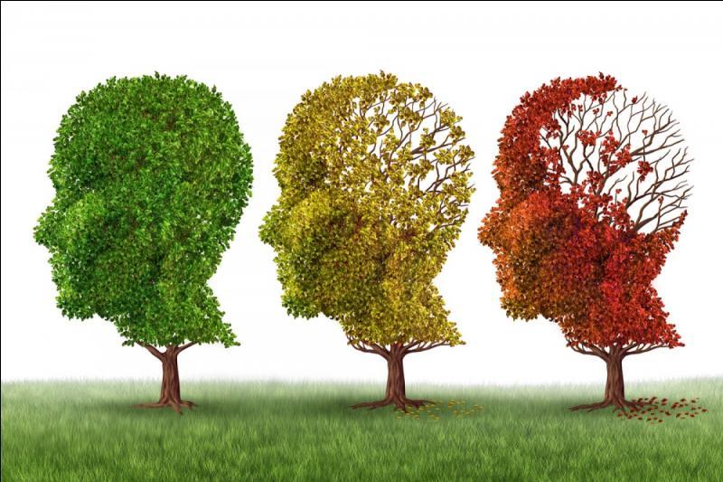 Un psychiatre allemand a donné son nom é cette maladie neurologique.