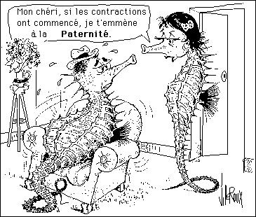 Ce quiz peut provoquer de violentes contractions, donc madame, si vous avez un polichinelle dans le tiroir, il est extrêmement déconseillé de vous y attaquer !