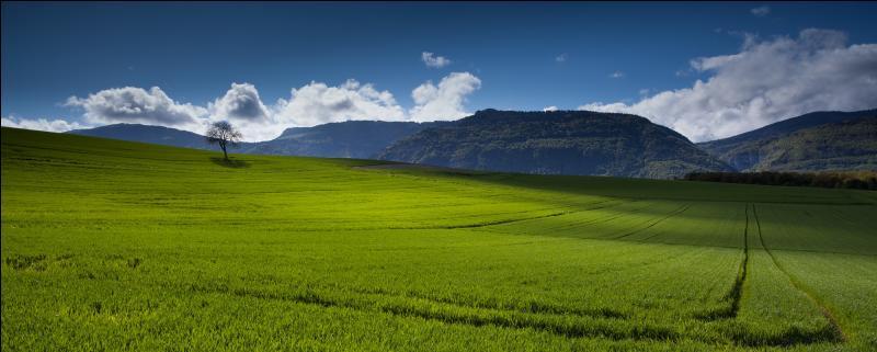 Vrai ou faux ? Les exportations (blé…) sont fréquentes dans les agrosystèmes.