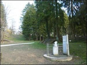 Quelles furent les pertes totales de la bataille de Verdun ?