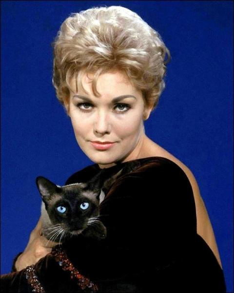 Dans cette envoûtante comédie, Kim Novak est une jolie sorcière ensorcelant son voisin James Stewart avec l'aide de Baal Moloch son chat, et tombant amoureuse au risque de perdre ses pouvoirs magiques...