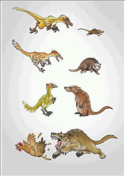 Laquelle de ces familles a disparu en même temps que les dinosaures ?