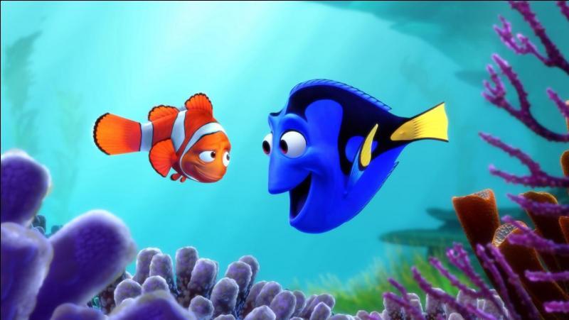 Dory, le poisson chirurgien bleu amnésique, retrouve ses amis Nemo et Marin. Tous trois se lancent à la recherche du passé de Dory. Pourra-t-elle retrouver ses souvenirs ? Qui sont ses parents ? Et où a-t-elle bien pu apprendre à parler la langue des baleines ?