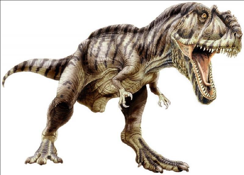 Les Carcharodontosauridés : Tyrannotitan (13m ; 7T)Carcharodontosaurus (12m ; 6T)Quel est le plus grand de la famille ?