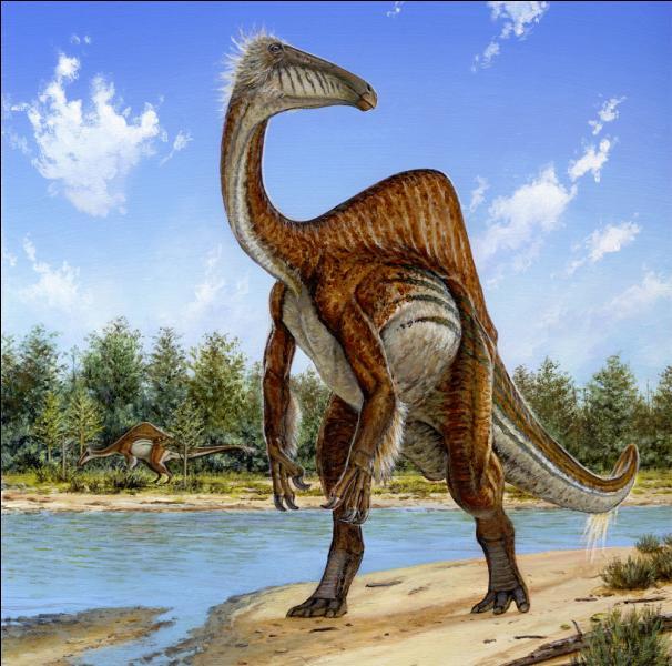 Les Ornithomimidés : Beishanlong (7m ; 550kg)Gallimimus (6m ; 450kg)Quel est le plus grand de la famille ?