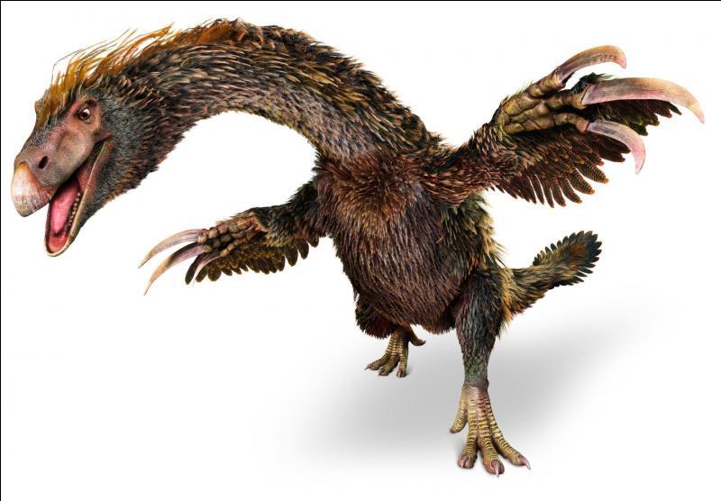 Les Thérizinosauridés : Suzchousaurus (6m ; 1.3T)Segnosaurus (6m ; 1.3T)Quel est le plus grand de la famille ?