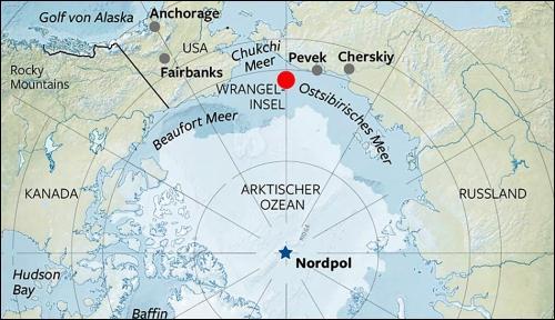 Sur l'île de Wrangel, proche du détroit de Béring, de petits mammouths ont vécu jusqu'à une époque plus récente que la disparition estimée du mammouth laineux qui remonte, elle, à 10 000 ans. D'après les datations au carbone 14, cette espèce aurait historiquement disparu :