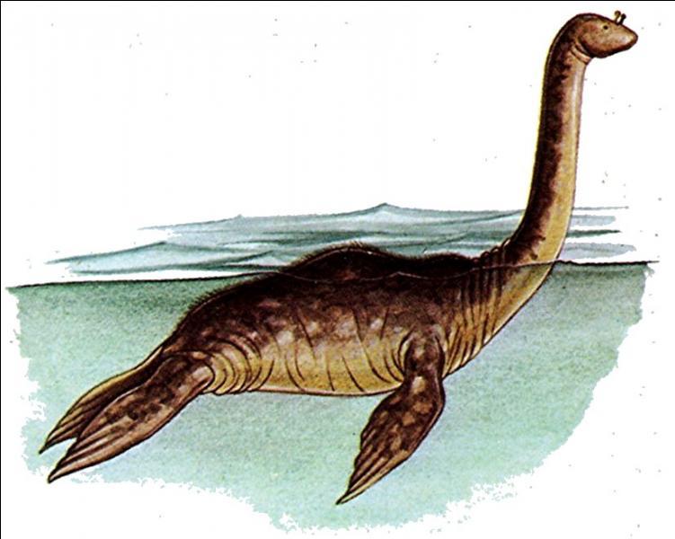 Selon certains spécialistes, il serait en réalité un mammifère aquatique. Une sorte de :