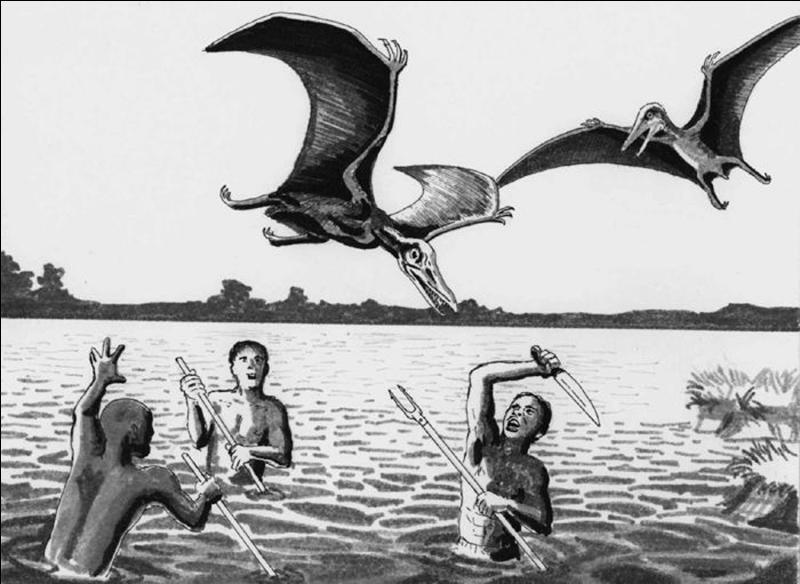 Dans les marécages africains, en Amérique du Nord et en Océanie, les indigènes décrivent un lézard doté d'ailes en peau, sans plumes et un bec armé de dents (nommé en Afrique, « le kongamato » : « celui qui fait chavirer les pirogues »). Il pourrait s'agir d'un reptile volant de la famille des :