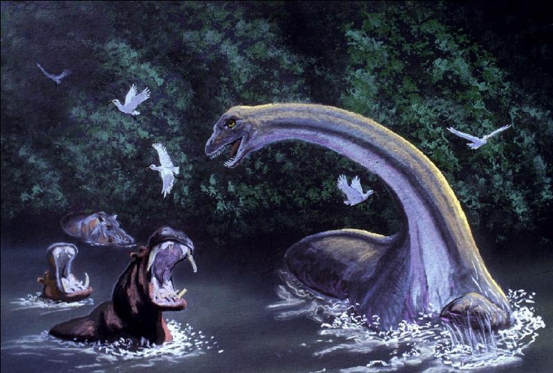 Dans l'ouest de l'Afrique centrale, des milliers de kilomètres carrés de marécages bordent les fleuves. Les tribus qui vivent aux abords de ces forêts inondées décrivent presque toutes un dinosaure au long cou qu'ils appellent souvent « Mokélé-mbembé ». Ce nom veut dire en français :