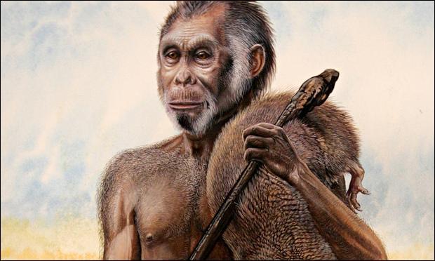On a récemment découvert qu'un petit homme préhistorique, surnommé depuis « le hobbit », avait vécu autrefois sur une île voisine de Sumatra. Il s'agit de :