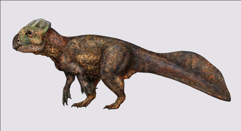 Ce dinosaure a-t-il réellement existé ?