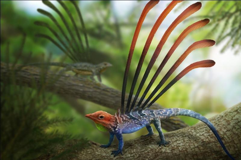 Ce reptile a-t-il réellement existé ?