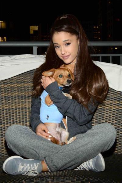Ariana aime tellement les animaux qu'elle a...