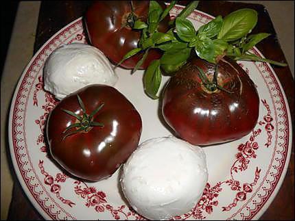 Quelle est cette tomate qui voisine avec les boules de mozarella ?