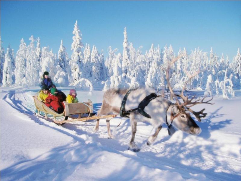Avec d'autres, il est censé conduire le Père Noël jusqu'à votre cheminée !