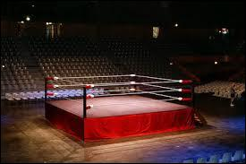 """Ce sport se joue sur un ring. On le pratique avec des gants et un """"casque"""". Le sport consiste à frapper l'adversaire. Et, si tu as la rage, va faire de la ... !"""