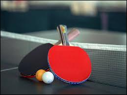 """Voici un sport qui ressemble beaucoup au tennis. Enfin, c'est du tennis sur une table avec quelques règles qui changent. Le nom de ce sport est """"tennis de table"""". Et, comment peut-on aussi l'appeler ?"""
