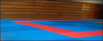Ce sport consiste à faire des prises à son adversaire.Comme chaque sport, on devient de plus en plus fort, là il y a les ceintures pour être classé par niveaux. Et si tu as la ceinture noire, tu es vraiment doué. Quel est-donc ce sport ?