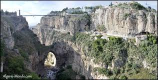 """Quelle ville est surnommée """"La ville des ponts suspendus """"?"""
