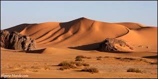 Comment s'appelle le désert algérien ?