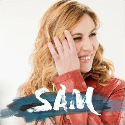 Combien y a-t-il eu d'épisodes dans la saison 1 de la série de Tf1 SAM ?