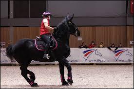 Un cheval qui montre le blanc des yeux et respire très fort, signifie :
