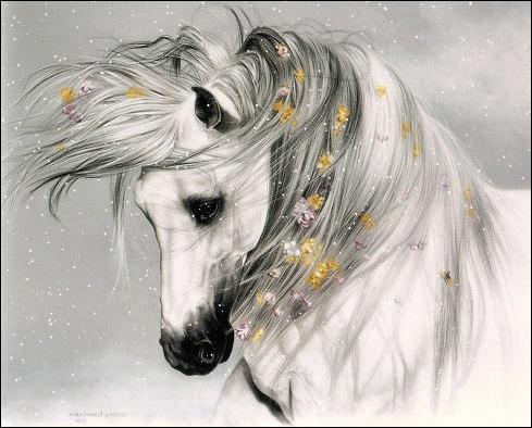 Comment s'appelle un cheval au poil blanc et à la peau noire ?