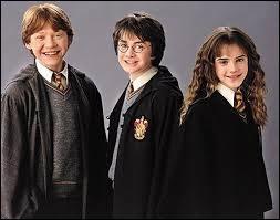 Comment les meilleurs amis de Harry Potter s'appellent-ils ?