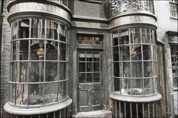 Comment appelle-t-on le magasin qui vend les baguettes magiques sur le Chemin de Traverse ?
