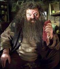 """Résultat de recherche d'images pour """"Harry Potter et l'Ordre du Phénix Hagrid"""""""