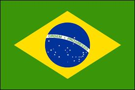 La capitale du Brésil, pays dont sont originaires plusieurs acteurs de la série, est Rio de Janeiro.