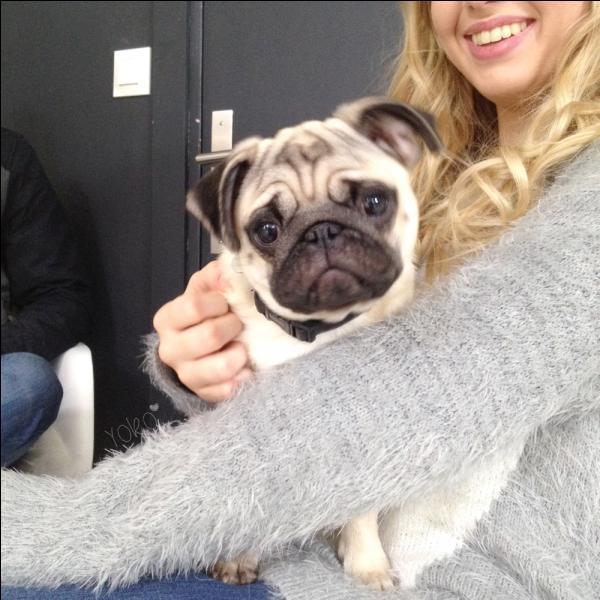 Quel est le p'tit surnom de son chien ?