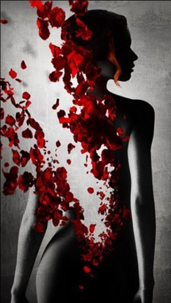 """Qui chantait """"Quelques mots d'amour qu'on leur dit toujours pour sécher leurs larmes quand on ne sait plus quoi inventer..."""""""