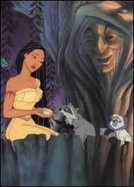Pocahontas ne veut pas se marier, elle va alors demander l'avis de Grand-Mère Feuillage. Qui est Grand-Mère Feuillage ?