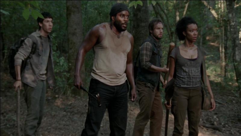 Pourquoi les nouveaux arrivants, trouvés par Carl, ne sont-ils pas restés à la prison ?