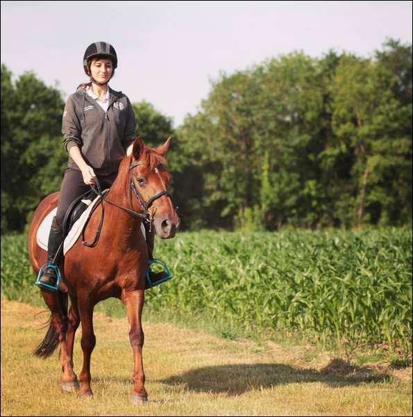 """Quel cheval Wendy demande-t-elle en mariage dans la vidéo """"Devine qui c'est"""" ?"""