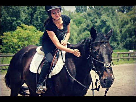 Quel est ce cheval que Wendy monte?