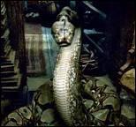 Comment le serpent de Voldemort s'appelait-il ?