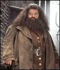 Qu'est-ce qu'Hagrid a apporté à Harry lors de son premier anniversaire ?