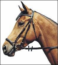 Ce cheval a une muserolle.......