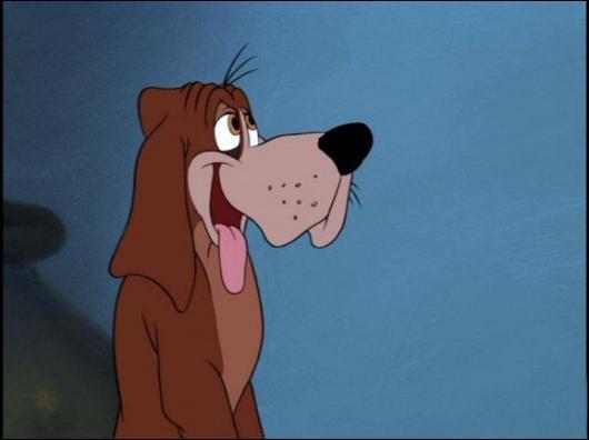 Dans quel film voit-on ce chien ?