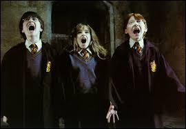 Tiens, tiens. Harry, Ron et Hermione semblent un tantinet effrayés. Pourquoi ?