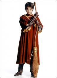 À quel poste Harry joue-t-il dans l'équipe de Quidditch ?