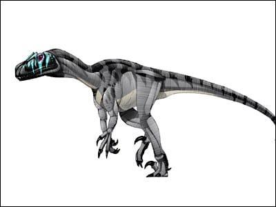 Que signifient les lettres N, O, et A dans Noasaurus leali ?