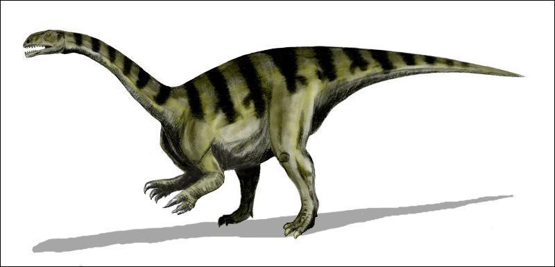 Quel est le dinosaure découvert le plus profondément ?